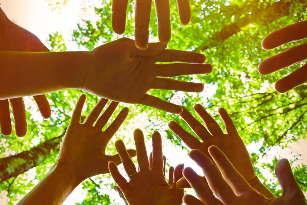 start-up environnement nature mains solidarité